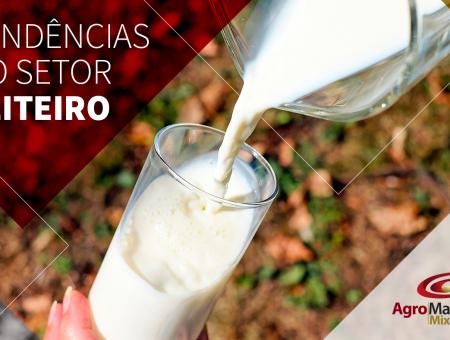 Tendências do setor leiteiro: Para onde caminha o mercado do leite?