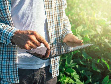 Entenda como melhorar a presença digital do seu agronegócio
